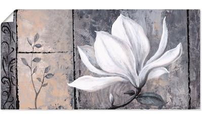 Artland Wandbild »Klassische Magnolie«, Blumen, (1 St.), in vielen Größen &... kaufen