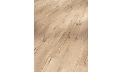 PARADOR Laminat »Trendtime 1  -  Eiche Century Sand«, 1285 x 158 mm, Stärke: 8 mm kaufen