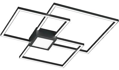 TRIO Leuchten LED Deckenleuchte »Hydra«, LED-Board, 1 St., Warmweiß, LED Deckenlampe,... kaufen