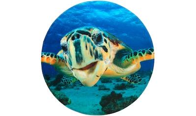 Sanilo Badematte »Schildkröte«, Höhe 15 mm, schnell trocknend, Memory Schaum kaufen