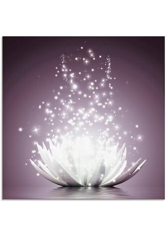 Artland Glasbild »Magie der Lotus-Blume«, Blumen, (1 St.) kaufen
