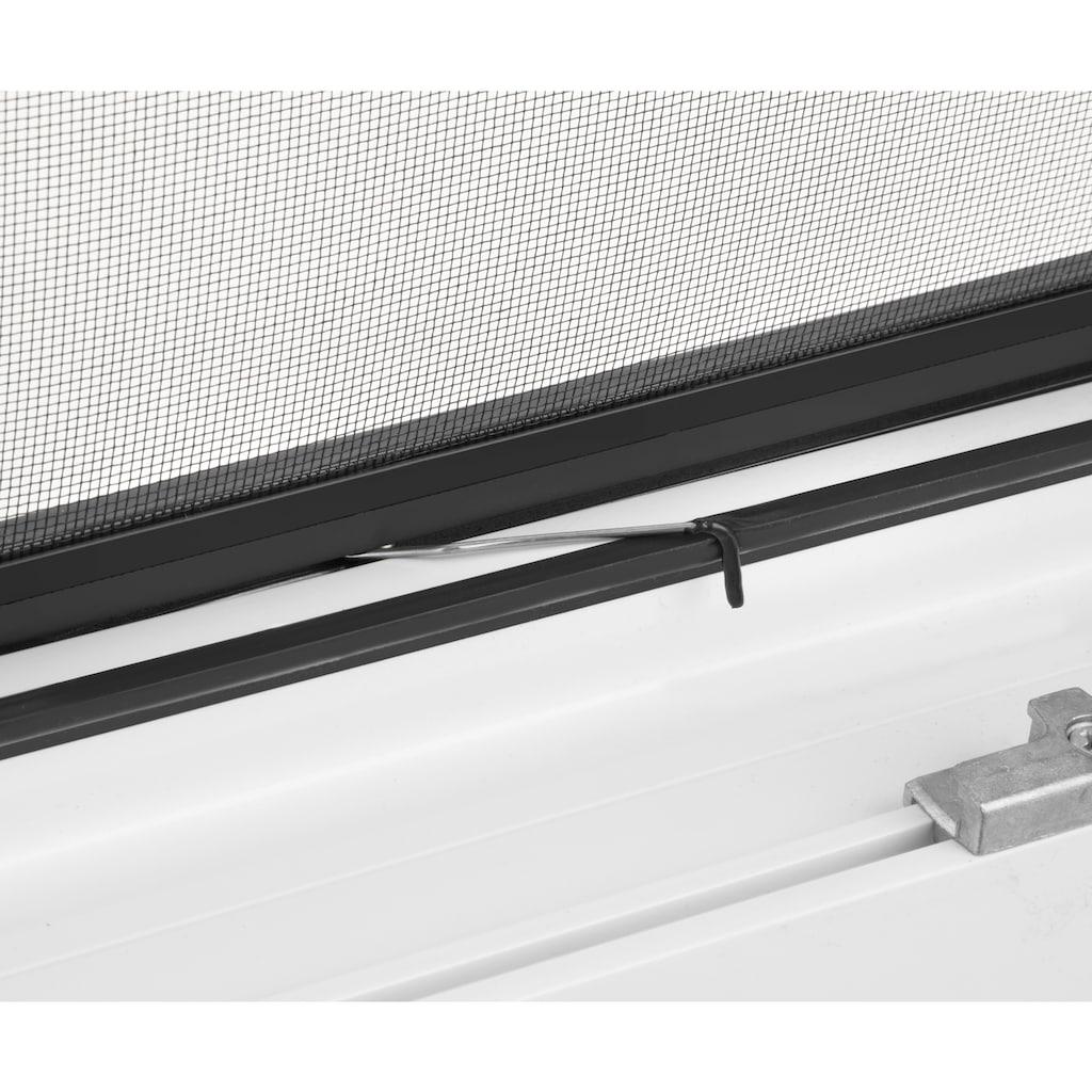 hecht international Insektenschutz-Fenster »MASTER SLIM«, anthrazit/anthrazit, BxH: 80x100 cm