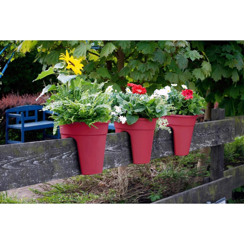 KHW Pflanzkübel »Flowerclip«, (Set, 3 St.), ØxH: 27x27,5 cm