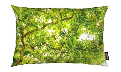 Juniqe Dekokissen »Hazel Tree«, Weiches, allergikerfreundliches Material kaufen