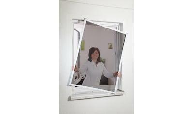 HECHT Insektenschutz - Fenster »MASTER SLIM POLLE«, weiß/anthrazit, BxH: 100x120 cm kaufen