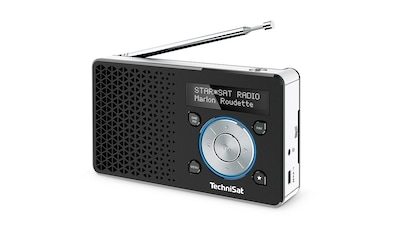 TechniSat DAB+ Digitalradio Made in Germany »DIGITRADIO 1« kaufen