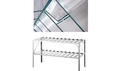 KONIFERA Set: Pflanztisch BxTxH: 126x50x75 cm, Inkl. Fensteröffner, silber kaufen