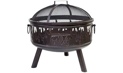 Buschbeck Feuerkorb »Wildfire«, BxLxH: 61x61x61 cm kaufen
