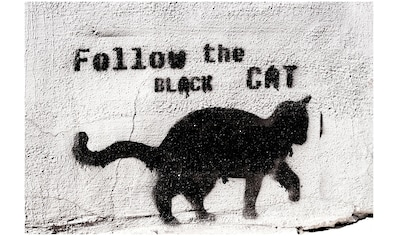 Art & Pleasure Acrylglasbild »Follow the black cat«, Katzen kaufen