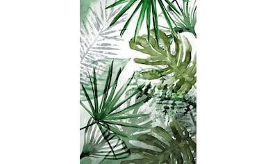 WOHNIDEE-Kollektion Fototapete »Palmenmix« kaufen