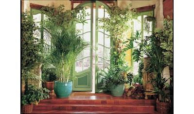 Fototapete »Larit Jardin« kaufen