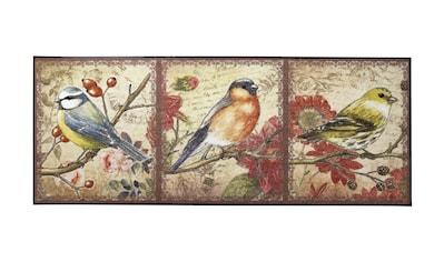 Fußmatte Vögel waschbar kaufen