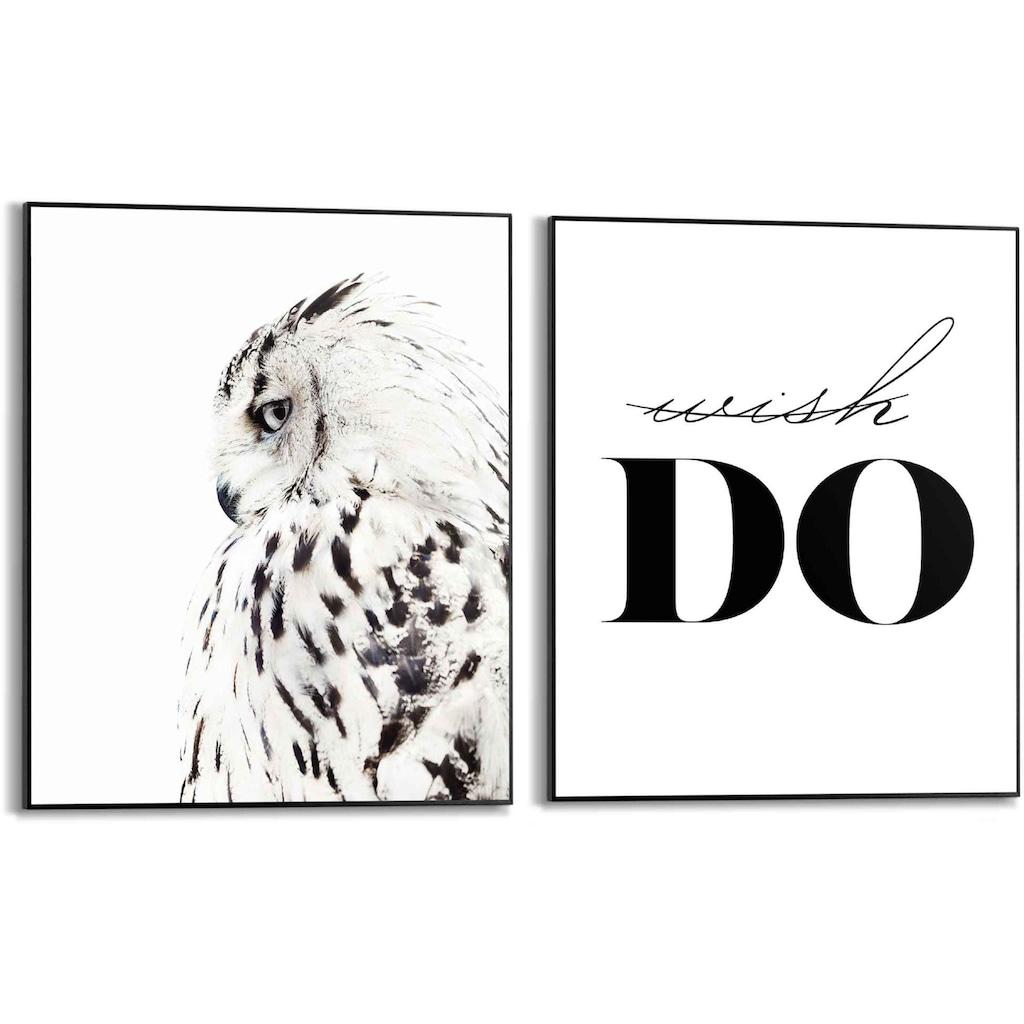 Reinders! Wandbild »Wandbilder Set Wunsch Eule - Weisheit - Text - Tier«, Schriftzug, (2 St.)