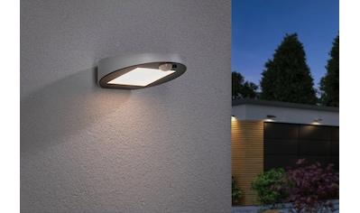 Paulmann LED Außen-Wandleuchte »Ryse Weiß Fassade/Hauswand geeignet«, Warmweiß kaufen