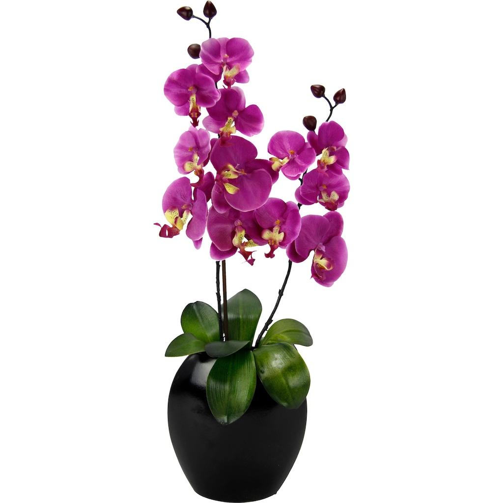 I.GE.A. Kunstpflanze »Phalaenopsis in Vase«