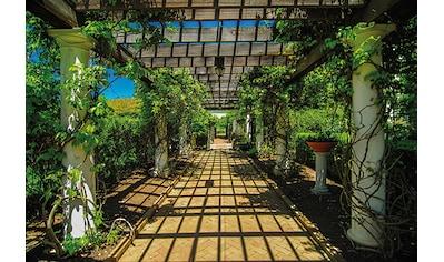 Papermoon Fototapete »Garden Walkway« kaufen