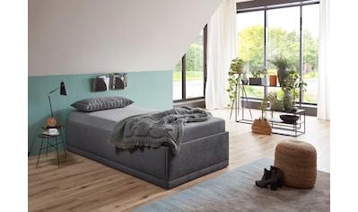 Westfalia Schlafkomfort Polsterbett »Texel«, Komforthöhe mit Zierkissen, inkl. Bettkasten bei Ausführung mit Matratze kaufen