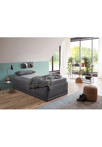 Westfalia Schlafkomfort Polsterbett »Texel« kaufen
