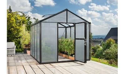 Vitavia Gewächshaus, »Zeus 8100« kaufen