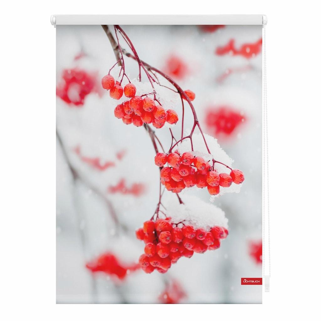 LICHTBLICK ORIGINAL Seitenzugrollo »Klemmfix Motiv Vogelbeeren«, Lichtschutz, ohne Bohren, freihängend, bedruckt