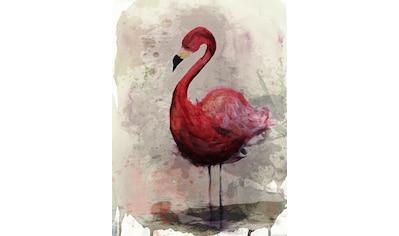 living walls Fototapete »ARTist Flamingo«, Vlies, glatt kaufen