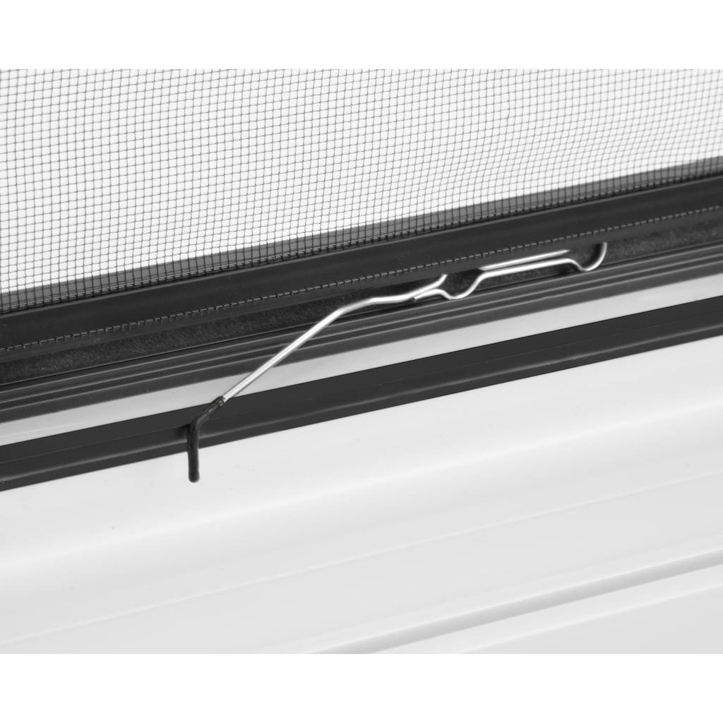 hecht international Insektenschutz-Fenster »COMPACT«, anthrazit/anthrazit, flächenbündig, BxH: 100x120 cm