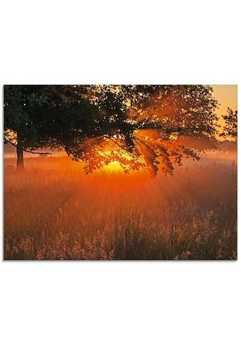 Artland Glasbild »Mystische Stimmung«, Sonnenaufgang & -untergang, (1 St.) kaufen