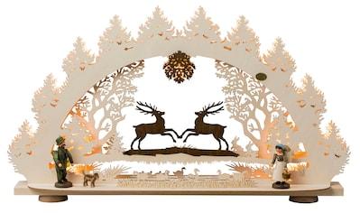 SAICO Original 3D - Lichterbogen Springende Hirsche, 15flammig elektrisch beleuch kaufen