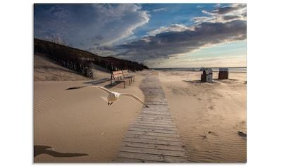 Artland Glasbild »Strandimpressionen«, Strand, (1 St.) kaufen