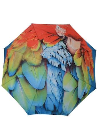 doppler® Stockregenschirm »Modern Art, Ara« kaufen