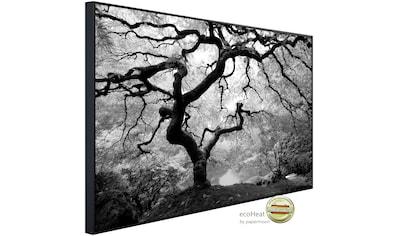 Papermoon Infrarotheizung »Waldbaum schwarz & weiß«, sehr angenehme Strahlungswärme kaufen