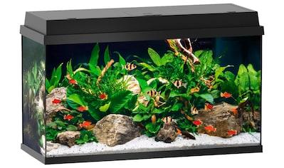 JUWEL AQUARIEN Aquarium »Primo 110«, 110 Liter. BxTxH: 81x36x45 cm, schwarz kaufen