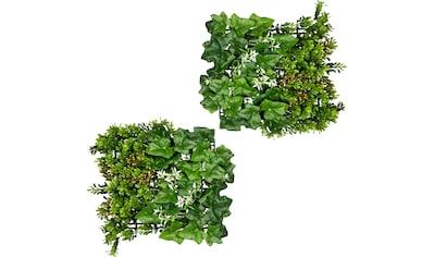 Creativ green Künstliche Zimmerpflanze »Blättermatte Buchsbaum-Efeumix«, 2er Set kaufen