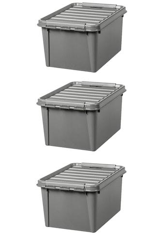 Orthex Aufbewahrungsbox »Smart Store Recycled 31«, (Set, 3 St.), je 32 Liter kaufen