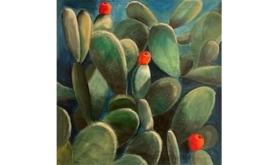 queence Leinwandbild »Cactus de Felanitx«, Pflanzen, (1 St.) kaufen