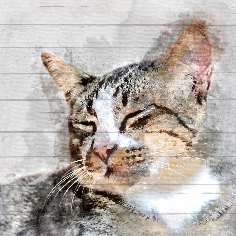 Home affaire Holzbild »Katzenkopf«, Katze