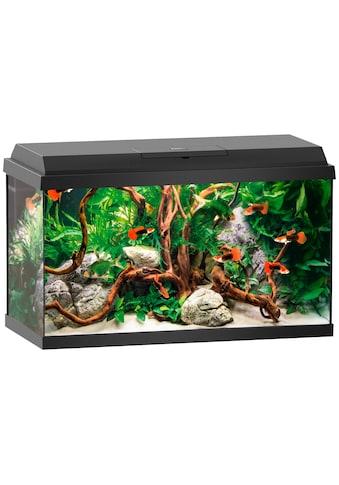 JUWEL AQUARIEN Aquarium »Primo 60«, BxTxH: 61x31x37 cm, 60 l kaufen