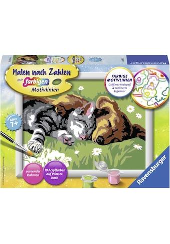Ravensburger Malen nach Zahlen »Tiefer Schlaf«, Made in Europe, FSC® - schützt Wald -... kaufen