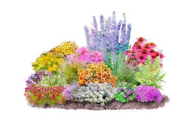Balkonpflanzen Auf Raten Baur