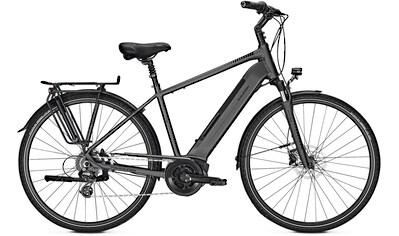 Raleigh E-Bike »Boston 9« kaufen