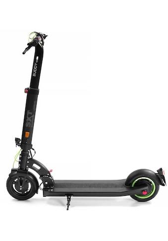 SXT Scooters E - Scooter »SXT Buddy V2  -  eKFV Version  - «, 350 Watt, 20 km/h kaufen