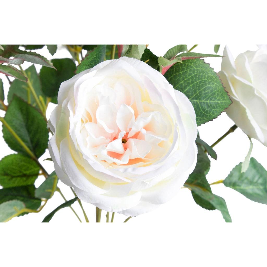 Botanic-Haus Kunstblume »Englischer Rosenbusch«