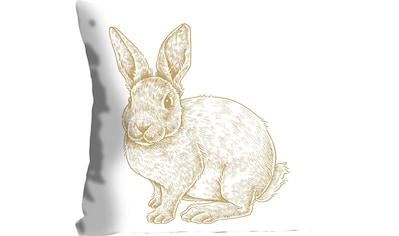 queence Kissenhülle »Thorge«, (1 St.), mit einem flauschigen Hasen kaufen