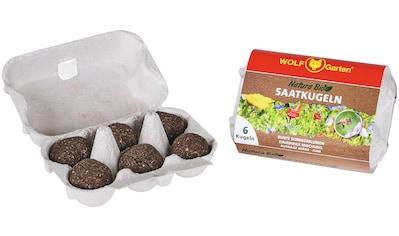 WOLF-Garten Blumensamen »N-KSO 6«, 6 Saatkugeln in Bioqualität kaufen