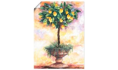 Artland Wandbild »Zitronenbaum«, Bäume, (1 St.), in vielen Größen & Produktarten... kaufen