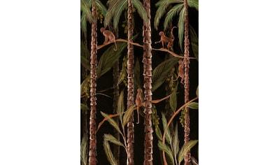 Fototapete »Monkey Jungle«, Schwarz, 280 cm x 200 cm kaufen
