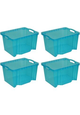 keeeper Aufbewahrungsbox »franz« (Set, 4 Stück) kaufen