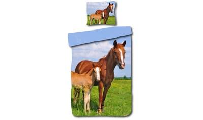 DayDream Kinderbettwäsche »Pferd«, mit Pferde-design kaufen