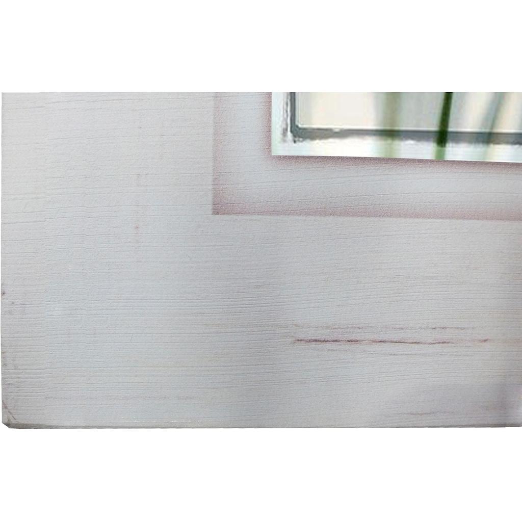 Home affaire Holzbild »Pusteblume nah«, 40/40 cm