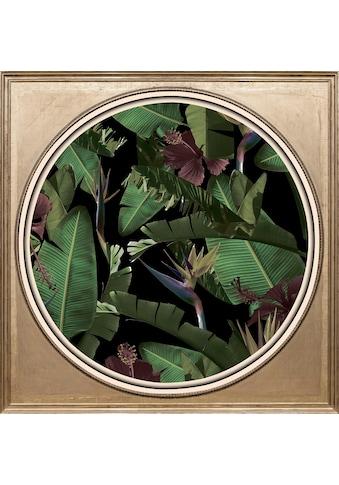 queence Acrylglasbild »Tropische Pflanzen II« kaufen